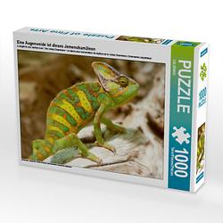 Eine Augenweide ist dieses Jemenchamäleon Lege-Größe 64 x 48 cm Foto-Puzzle Puzzle