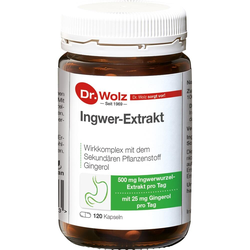 Ingwer Extrakt Dr.Wolz Kapseln