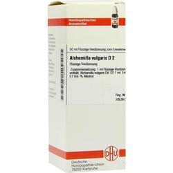 ALCHEMILLA VULG D 2