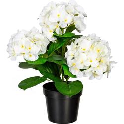Kunstpflanze Hortensienbusch Hortensie, Creativ green, Höhe 32 cm weiß 32 cm
