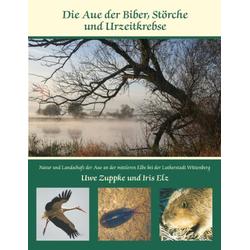 Die Aue der Biber Störche und Urzeitkrebse als Buch von Uwe Zuppke/ Iris Elz