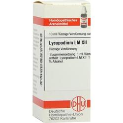 LM LYCOPODIUM XII
