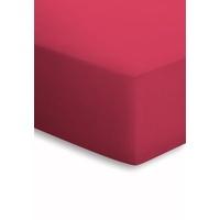 SCHLAFGUT Basic Mako-Jersey (180x200-200x200cm) kirsche