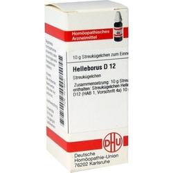 HELLEBORUS D 12 Globuli 10 g