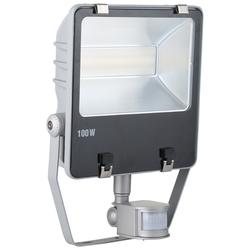 LED Außenstrahler  mit oder ohne Bewegungsmelder von Kerbl, 100 Watt ohne Bewegungsmelder (7.500 lm)