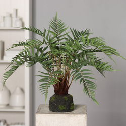 Kunstpflanze Waldfarn(H 60 cm)