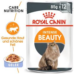 ROYAL CANIN Intense Beauty Katzenfutter nass in Gelee für schönes Fell 12 x 85 g