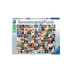 Ravensburger Puzzle Puzzle 1500 Teile, 80x60 cm, 99 Katzen, Puzzleteile