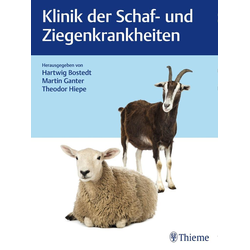 Klinik der Schaf- und Ziegenkrankheiten als Buch von