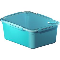 Rotho MEMORY Mikrowellen-Dose, Mikrowellen-Behälter zum Aufwärmen, Transportieren oder Frischhalten, Füllmenge: 5000 ml, 290 x 220 x 121 mm, AQUA blau