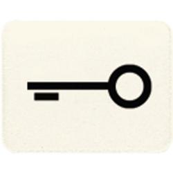 Jung 33T,Kalotte mit Symbol, lichtundurchlässig, weiß, Symbol Tür