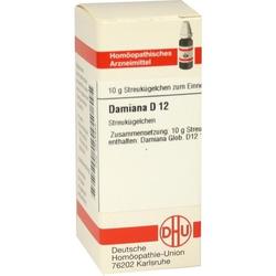 DAMIANA D12