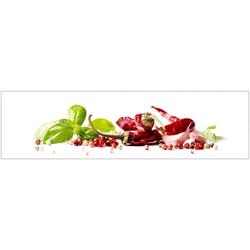 Küchenrückwand - Spritzschutz profix, Herbs & Spice, 220x60 cm rot