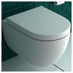 Alpenberger Tiefspül-WC Dusch WC + WC-Sitz D-Form, 2 in 1 BIDET & WC