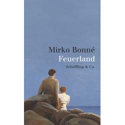 Feuerland als Buch von Mirko Bonné