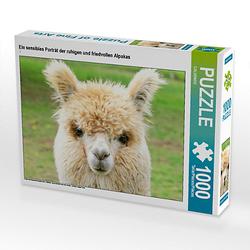 Ein sensibles Porträt der ruhigen und friedvollen Alpakas Lege-Größe 64 x 48 cm Foto-Puzzle Puzzle