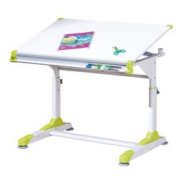 ebuy24 Schreibtisch Color Schreibtisch Weiss.
