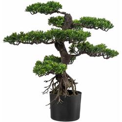 Kunstbonsai Bonsai Bonsai, Creativ green, Höhe 65 cm