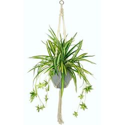 Künstliche Zimmerpflanze Wasserlilie, I.GE.A., Höhe 95 cm, im Kunststofftopf, mit Hängeampel