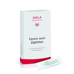 Carum carvi Zäpfchen