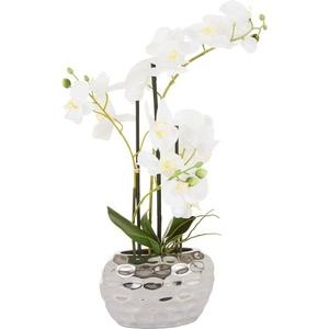 Kunstpflanze Orchidee Orchidee, Leonique, Höhe 55 cm weiß 20 cm x 55 cm x 11 cm
