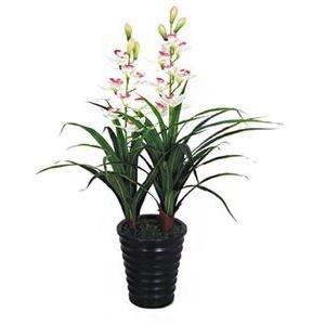 Decovego Kunstblume Orchidee, weiß, Höhe 100 cm, im Topf