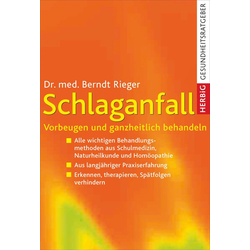 Schlaganfall: eBook von Berndt Rieger