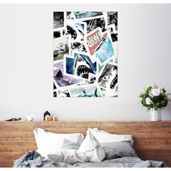 Posterlounge Wandbild, Der Weiße Hai - Fotocollage 50 cm x 70 cm