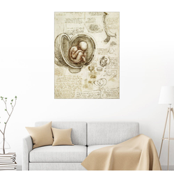 Posterlounge Wandbild, Studien des Embryos 30 cm x 40 cm
