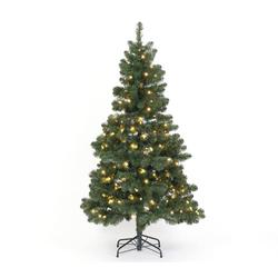Weihnachtsbaum Oxford Kiefer 180 cm