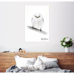 Posterlounge Wandbild, Kleine Schwanzmeise 20 cm x 30 cm
