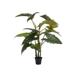 KARE Dekoobjekt Deko Pflanze Taro 180cm