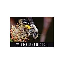 Wildbienen 2021