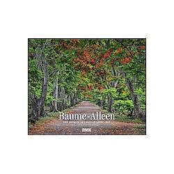 Bäume - Alleen 2021