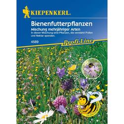 Bienenfutterpflanzen Mischung mehrjähriger Arten (26,60 € pro 100 g)