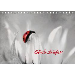 Glückskäfer (Tischkalender 2021 DIN A5 quer)