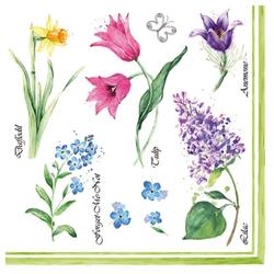 Linoows Papierserviette 20 Servietten, Frühling, heimische Frühlingsblumen, Motiv heimische Frühlingsblumen