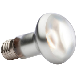 Exo Terra EX Tight Beam Tageslichtlampe Spezialleuchtmittel, E27, Tageslichtweiß, 75 Watt