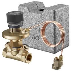 Oventrop Differenzdruckregler Hycocon DTZ PN 16, 50-300 mbar DN 15, 1/2