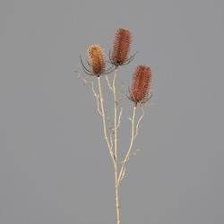 Distel(H 70 cm)