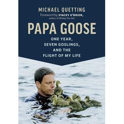 Papa Goose als Buch von Michael Quetting