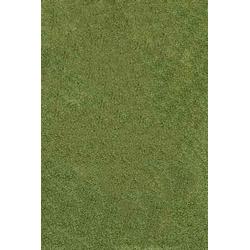 Hochflor Teppich Shaggy (Grün)