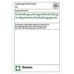 Strafvollzug und Jugendstrafvollzug im Bayerischen Strafvollzugsgesetz. Ragnar Schneider  - Buch