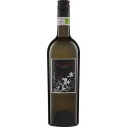 Pinot Grigio IGT 2019 La Jara