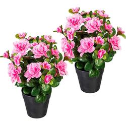 Künstliche Zimmerpflanze Annelie Azalee, my home, Höhe 26 cm, 2er Set rosa