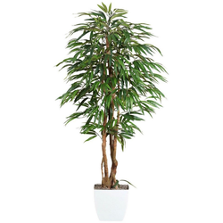 Kunstpflanze Weeping-Ficus Ficus, Creativ green, Höhe 150 cm