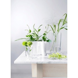 iittala Alvar Aalto Vase Opal 10cm