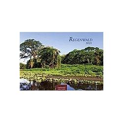 Regenwald 2021 L - Kalender