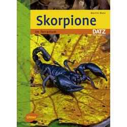 Skorpione im Terrarium als Buch von Martin Watz