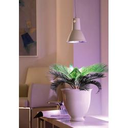 Bellissa Pflanzenlampe L 15